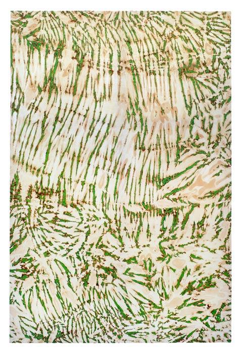 décompression verte, 2013              (130 x 195)