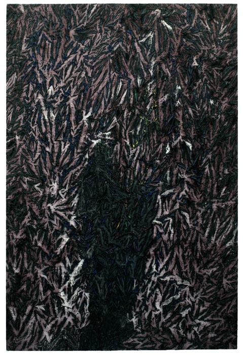 du noir,  2014 (130 x 195 )
